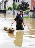 Прикарпаття просить 500 мільйонів на ліквідацію наслідків стихії (відео)