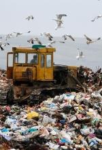 Інвестори готові вкласти €100 мільйонів у переробку львівського сміття