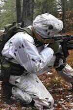 Окупанти обстріляли позиції ЗСУ біля Новотошківського, Лебединського та Березового