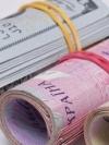 До бюджету за пів року надійшло понад 131 мільярд ЄСВ