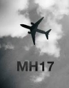 Нідерланди готують позов до ЄСПЛ проти Росії через збитий МН17