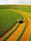 Зеленський обговорив із главою Світового банку земельну реформу