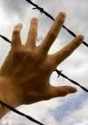 Порошенко закликав Фінляндію тиснути на Росію в питанні звільнення затриманих українців (фото)