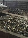 На одному зі складів Дніпропетровщини знайшли 15 тонн детонаторів