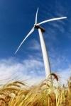 У зоні відчуження розвиватимуть вітроенергетику