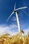 Міненерго оголосило конкурс на проект енергомосту Україна-ЄС