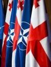 У Грузії стартують навчання НАТО за участю військових 24 країн