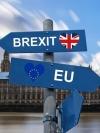 """У Британії створили партію Brexit для """"зрадженого електорату"""""""