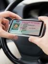 МВС відновило практичні іспити на водійські права